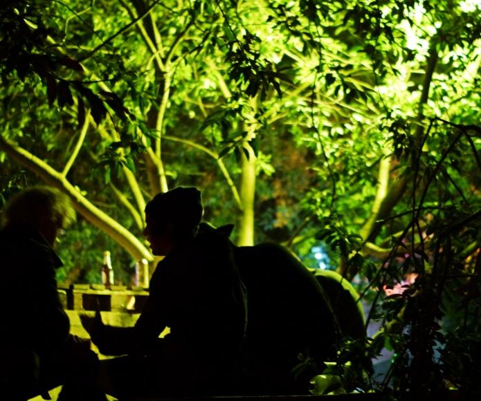 das lally (zielloses gespräch zwischen betrunken nach zwei uhr früh) im zauberwald