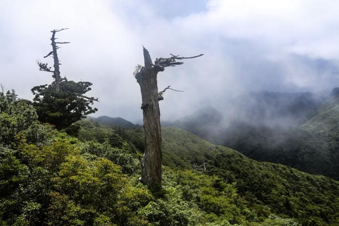 yakushima summits
