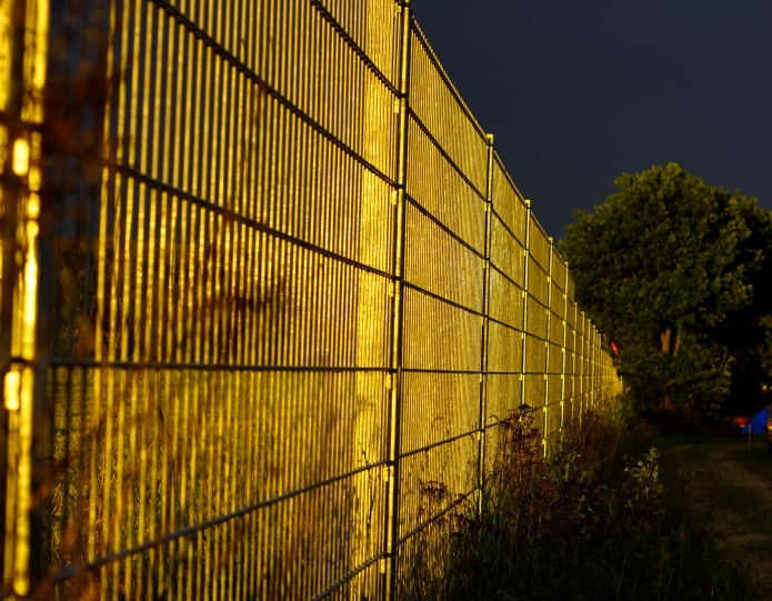 golden sunset fence