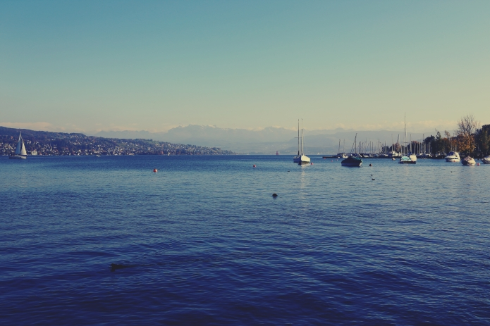 lago di zurigo .viii